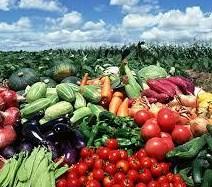 野菜と青空